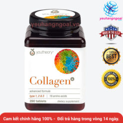 Collagen Youtheory Type 1, 2 & 3 290 Vien